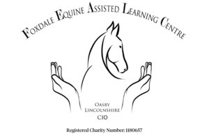 Foxdale Equine Assisted Learning