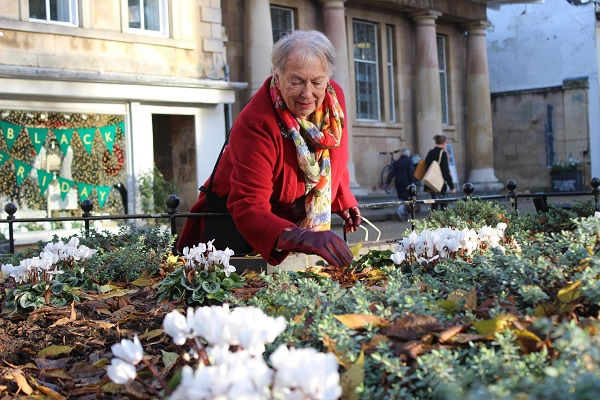 Lottery blossoms with town flower scheme